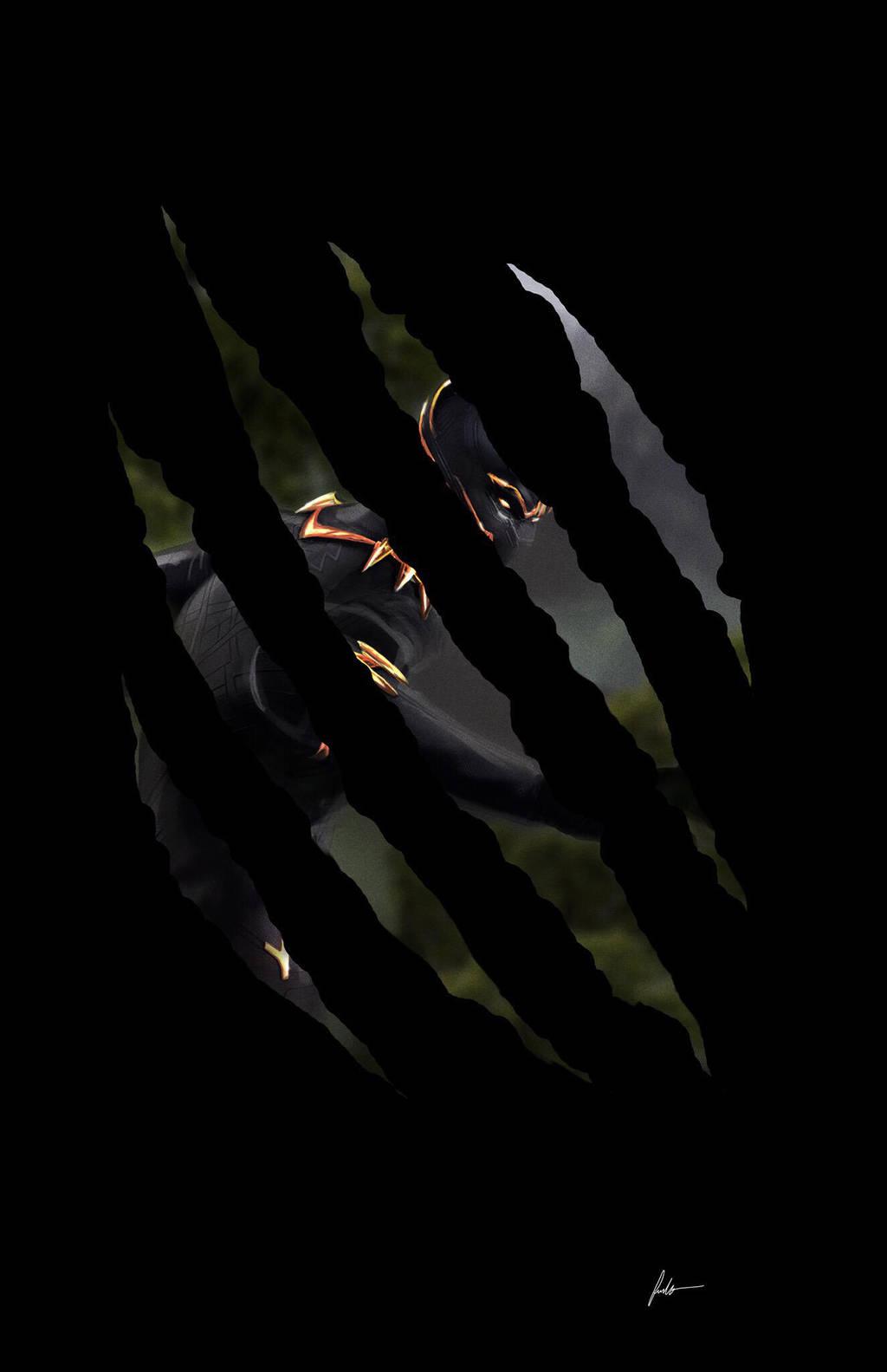 King of Wakanda by IronWarrior777