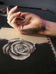 Messy Charcoal - WIP by secrets-of-the-pen