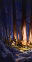 Forest by Aragah