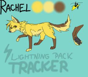 Rachel Character Sheet by NikkiMagicWolf