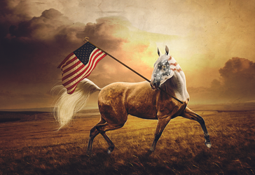 LAND OF THE FREE by MOONBTCH