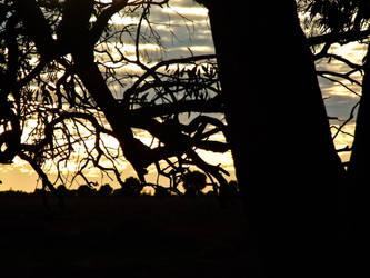 Sunrise, Sunset 06 by PhotographyByChilb