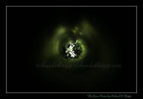 The Green Vortex by richardxthripp