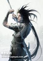 zhanshi by heise