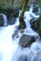 Cascada, Fragas do Eume by elminino