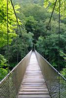 Puente colgante by elminino