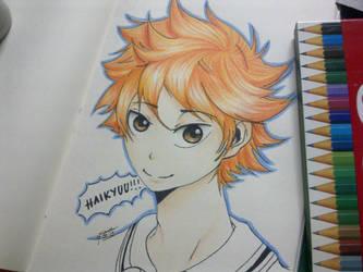 Haikyuu!!! Hinata~ by ButterflyInMaze
