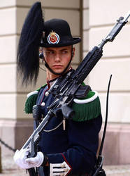 very hot Norwegian Royal Guardsman on duty  by Charles78
