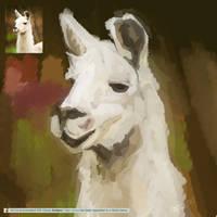 Llama by ChocoStyle