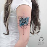 Blue Rose by koraykaragozler