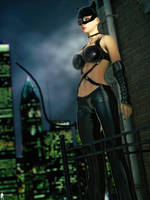 Catwoman 3 by LaMuserie