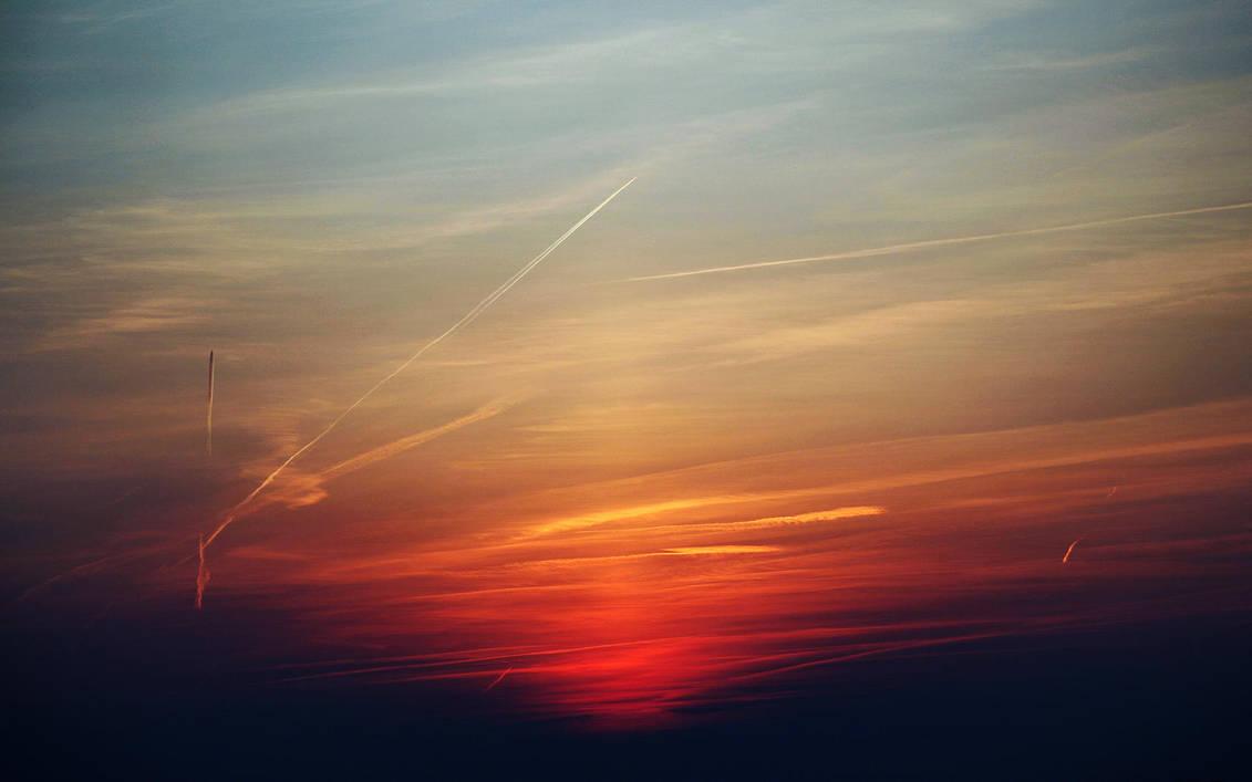 Sunset and Planes by mybeautifulwhitedog