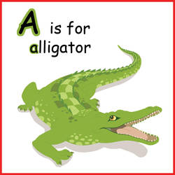 A is for alligator by Azerane