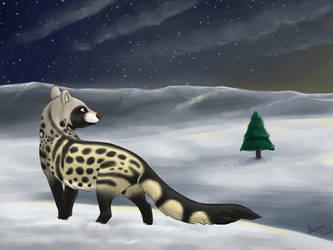 Safi's Christmas by Azerane