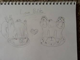 Love Birds by bskt-case