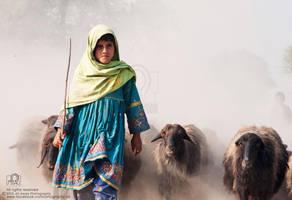 A Little Shepherd Girl by aliawais