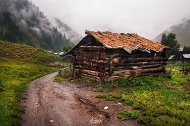 Dream House by aliawais