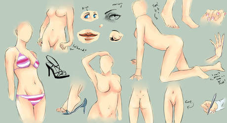 Female Anatomy Study by chi-u