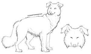 ..: Free Lines - Border Collie :.. by Freewolf7
