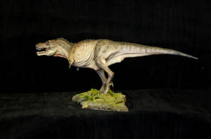 T.rex by Baryonyx-walkeri