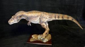 1:8 Scale Daspletosaurus by Baryonyx-walkeri