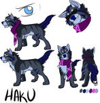 2016 Haku Character sheet by TehBobcat