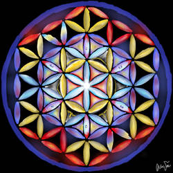 Flower of Life by mushroomGOD121