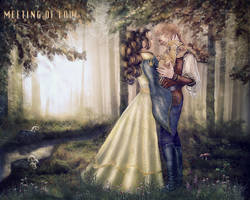 Meeting of love by irinama