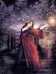 The sorcerer by irinama