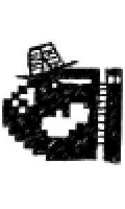 whod99's Profile Picture