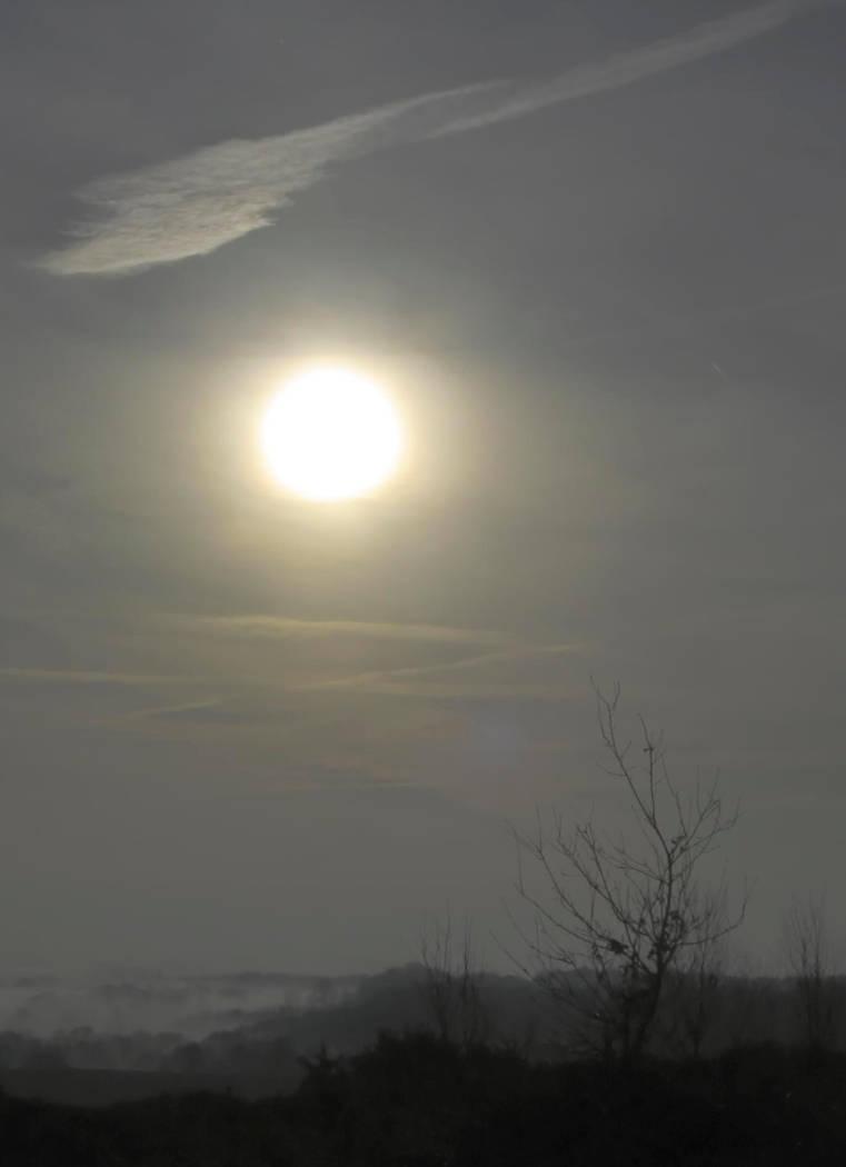 Winter Sun by cdegroot