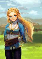 Zelda by TostujiRio