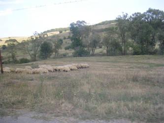Somewhere in Romania 5 by mikyzachibiakuma