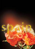 SPAIN by Maysiiu