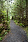 Alaskan Rainforest pathway by Stock-by-Kai