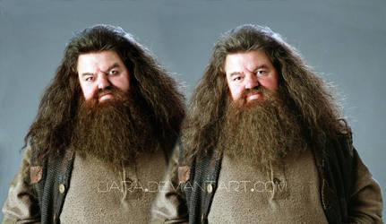 Evil Hagrid xD by Baira