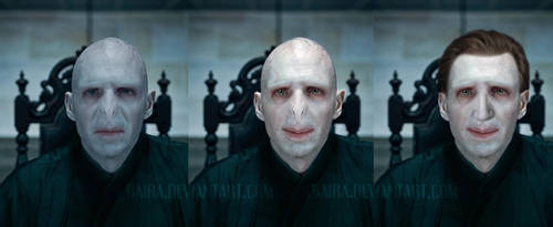 Good Voldemort vol2 by Baira