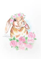 Peony Bunny by kralicimama