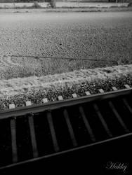 Train tracks by Hakkyna