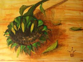sunflower by b-r-a-i-n-i