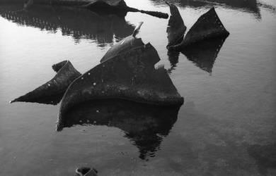 Abstraction 6 by GeorgiKrastev