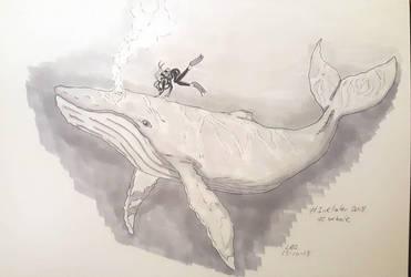 Whale by xXDeadWhiteRabbitXx