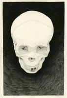 Skull by onnirica