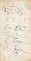 Hands by onnirica