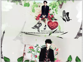 Hpbd Kaisoo by DelAbstyle