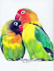 Lovebirds by blue-birdie-drawings
