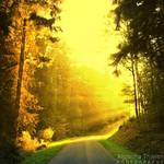 Yellow Rays by AljoschaThielen