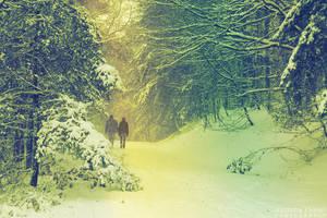 The Wanderer by AljoschaThielen