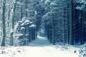 Frozen Time by AljoschaThielen