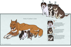 FrettaxCodrone Adoptable Pups by Valsier